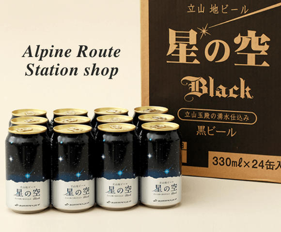 Alpine Route Station shop