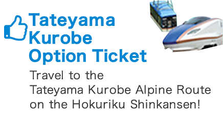 Tateyama Kurobe Opition Ticket
