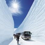 [日本北陸自由行]行程規劃秒懂立山黑部阿爾卑斯路線,讓你第一次玩黑部立山就上手懶人包
