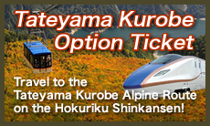 Tateyama Kurobe Option Ticket