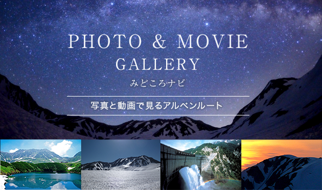 PHOTO&MOVIE GALLEY