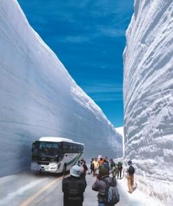 2014B1_買取画像_雪の大谷(タテ)